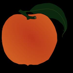 clip art clipart svg openclipart color 食物 fruit produce peach delicious peach juice orange color 剪贴画 颜色 水果