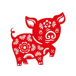 动物 884