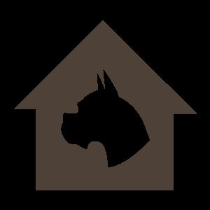 动物,彩色 1431