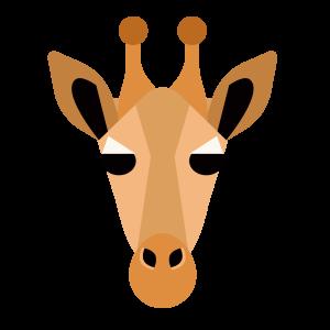 动物 彩色