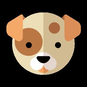 动物,彩色 1483