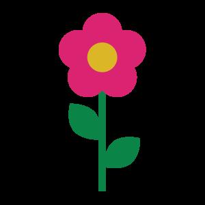 彩色,植物 1873