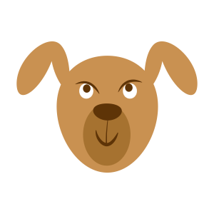 动物,彩色 1432