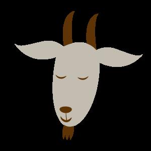 动物,彩色 1441
