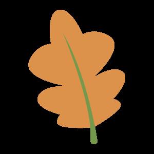 彩色 植物